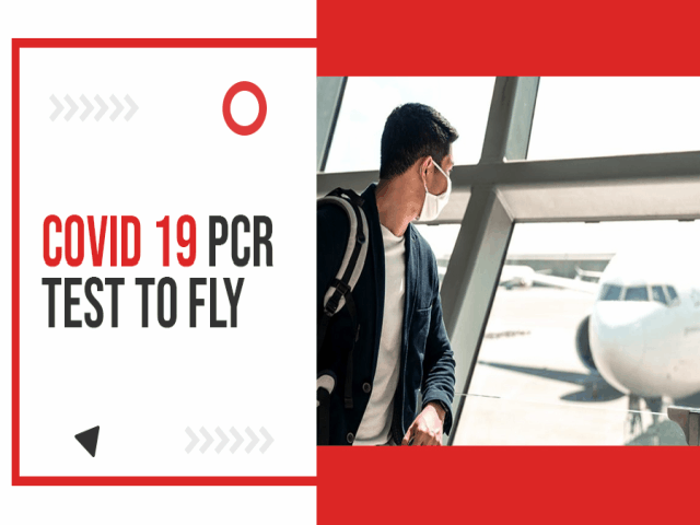 Top 8 FAQs Of COVID-19 PCR Test To Fly 1