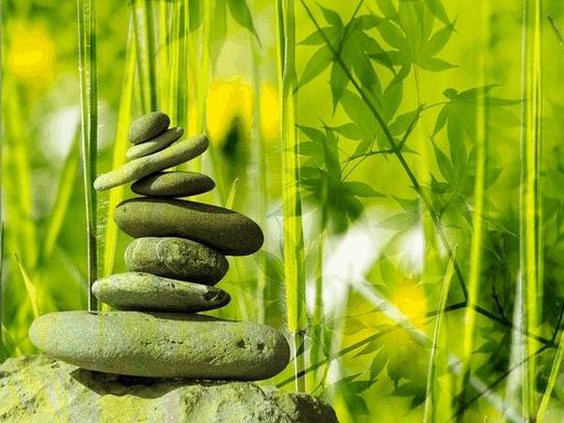 10 Great Benefits Of A Holistic Wellness Center 4