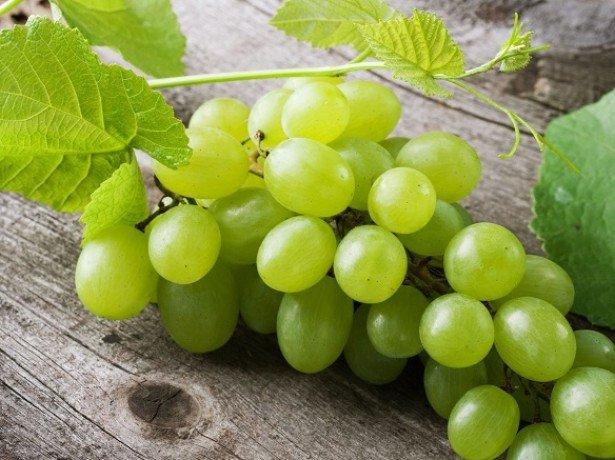 lechebni svoistva na grozde 2020