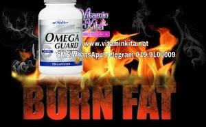 omega guard bakar lemak