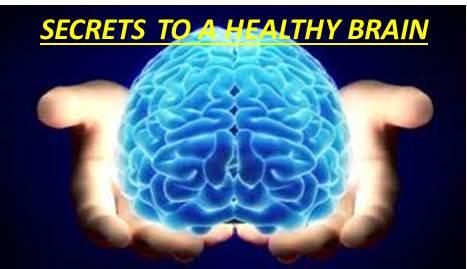 Nutrisi Untuk Otak Kanak-kanak