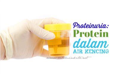 Bahayakah Protein Dalam Air Kencing?