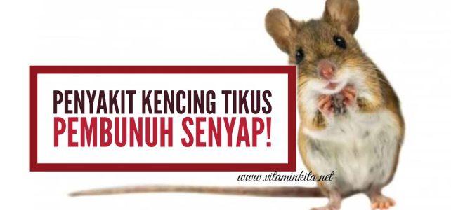 Leptospirosis: Penyakit Kencing Tikus Pembunuh Senyap