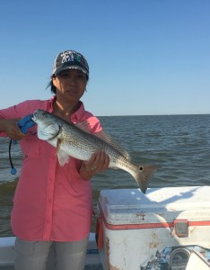 degrees in late november also galveston bay fishing guide charter texas rh vitaminseacharters