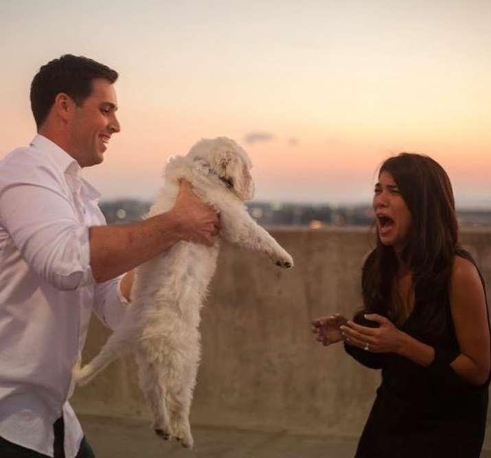 proposte di matrimonio strane