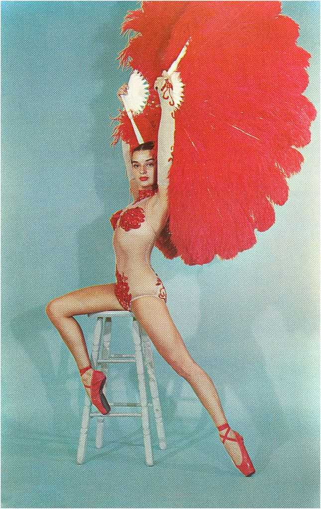 boa di struzzo ballerina vintage