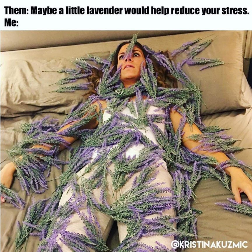 meme lavanda anti stress