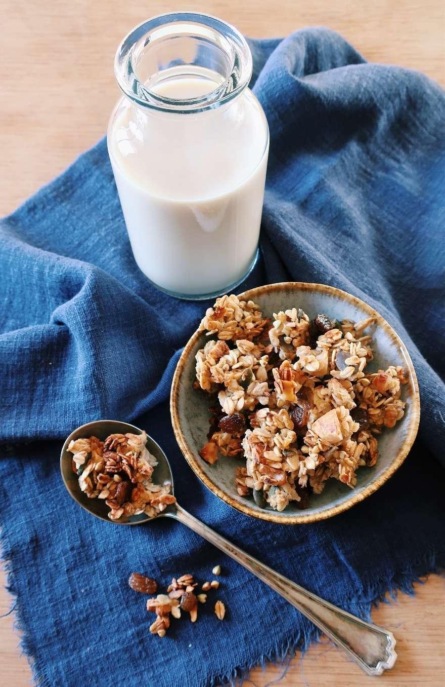 ricetta granola fatta in casa