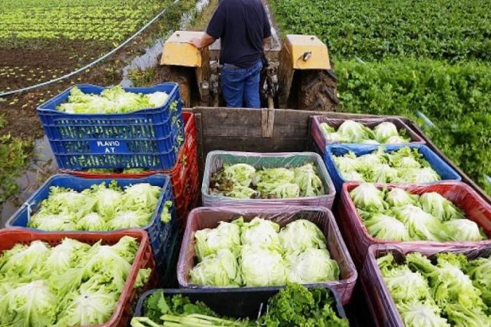Agricultura Familiar: Governo realiza capacitações em comunidades do Cariri