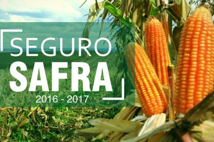 Monteiro é um dos poucos municípios que garantiram Seguro Safra para este mês