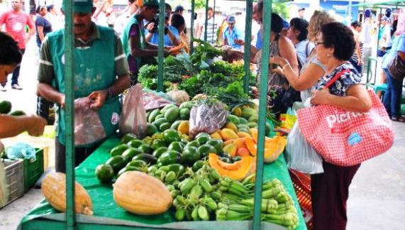 Produtores agroecológicos do Cariri participam de feira na semana do meio ambiente