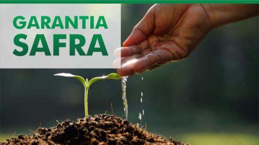 Ministério da Agricultura autoriza pagamento do Garantia-Safra em quatro cidades do Cariri
