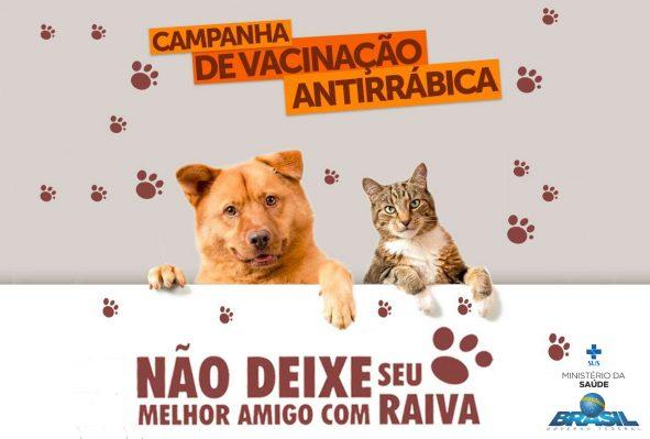 """""""Dia D"""" de Vacinação contra a Raiva em Cães e Gatos acontece neste sábado em Monteiro"""