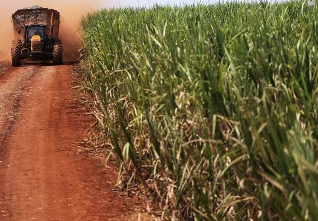 Usina sucroalcooleira na Paraíba é vendida por R$ 70 milhões
