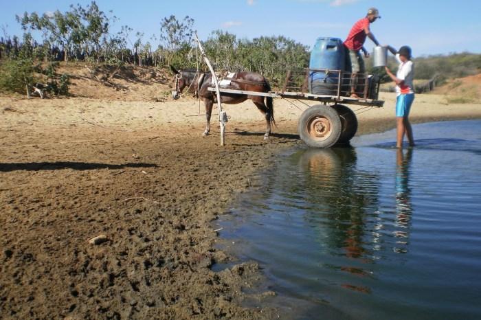 Monitor registra que aumento da área com seca passou de fraca para moderada no Cariri