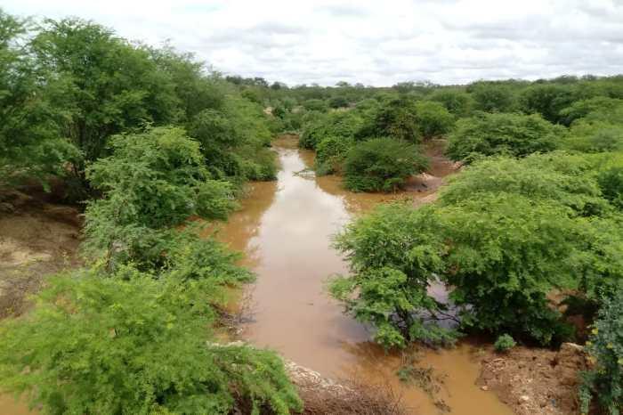 Chove forte em São Sebastião do Umbuzeiro e plantações ficam alagadas