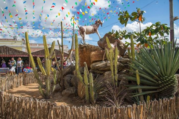 Festa do Bode Rei 2020 de Cabaceiras é lançada no Salão de Artesanato da Paraíba