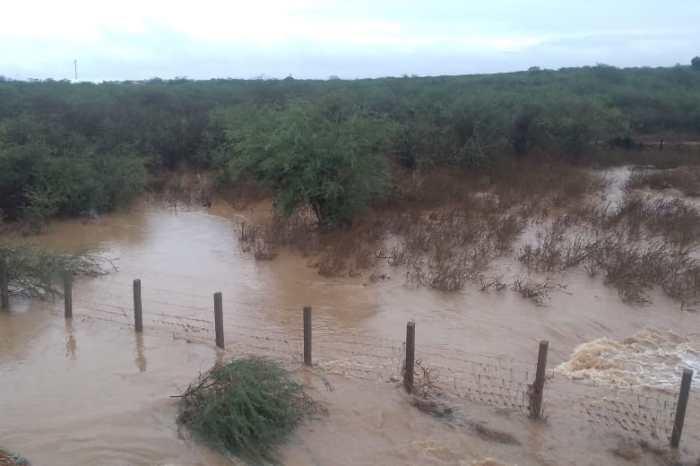 Cidades do Cariri registram chuva de mais de 140 milímetros; confira os índices pluviométricos