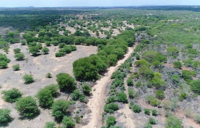 Aesa e Prefeitura de Sumé realizam mapeamento para limpeza dos leitos de rios