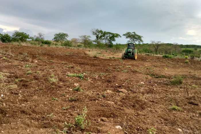 Em Monteiro: Secretaria de Agricultura realiza manutenção de estradas na zona rural