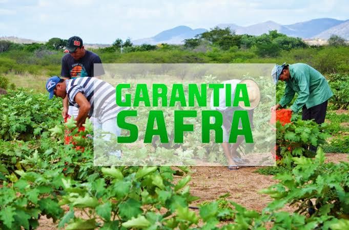 GARANTIA SAFRA: Agricultores de Monteiro podem fazer consulta online do Programa Garantia-Safra 2020