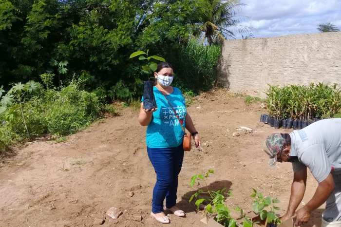 Prefeitura de Sumé e Projeto Socioambiental distribuem mudas de plantas em mais uma etapa