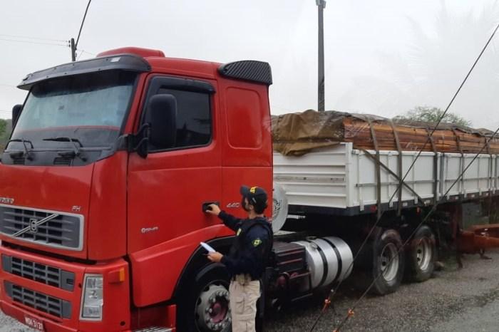 PRF apreende duas cargas de madeira ilegal do Pará na Paraíba