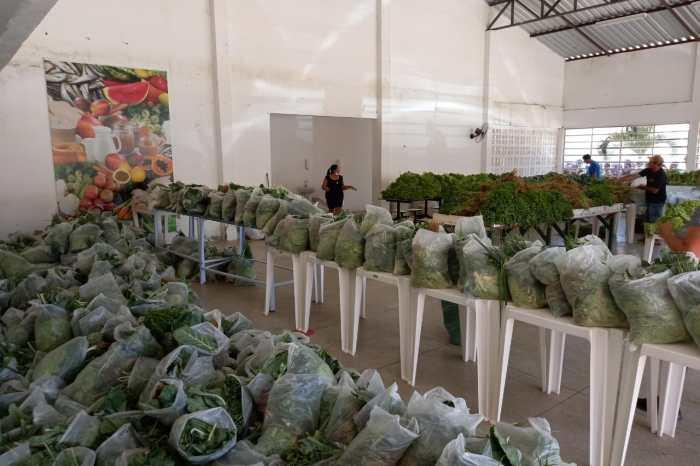 Mais de mil famílias são beneficiadas com distribuição de hortaliças pela Prefeitura de Monteiro
