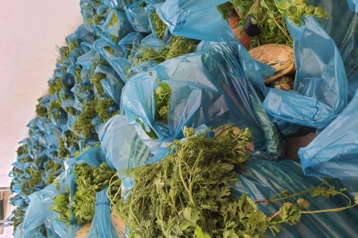Beneficiários de programas sociais em Monteiro recebem kits com verduras e legumes