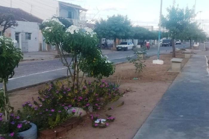 Canteiros e praça recebem serviços da Secretaria de Infraestrutura em Monteiro