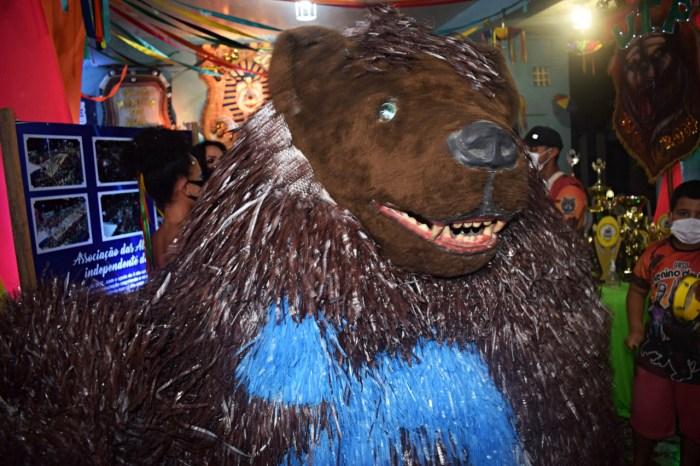 """Exposição """"Carnaval das Ala Ursas"""" já pode ser visitada pelos sapeenses"""