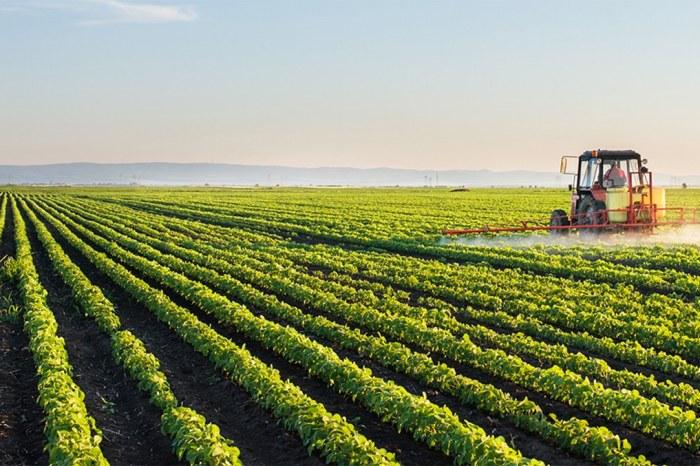 Exportações do agronegócio do Brasil superam US$ 10 bi em abril