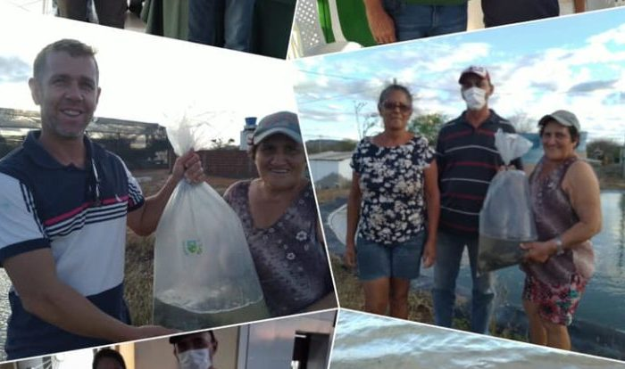 Prefeitura de São João do Cariri realiza distribuição de alevinos em seis barragens do município