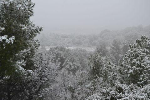 La zona de muntanya ha acuumulat gruixos destacables de neu // Elisenda Colell