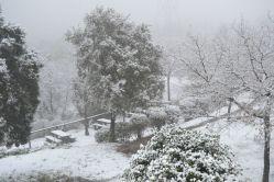 La neu ha deixat aquestes imatges a la zona del Castell Ciuró // Elisenda Colell