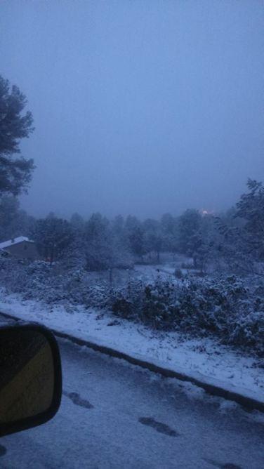 La neu ha deixat emblanquinades les zones urbanes de Collserola // ADF Puigmadrona Olorda