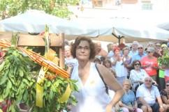 Diada Nacional de Catalunya Viu Molins de Rei 2018 (128)