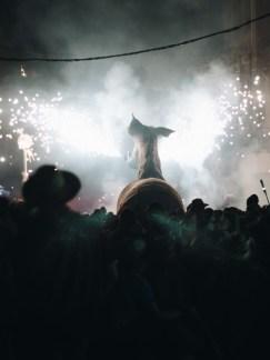 Aida Atencia el Camell Viu Molins de Rei 2018 (137)