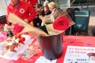 Sant Jordi 2019 Viu Molins de Rei (36)
