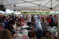 Sant Jordi 2019 Viu Molins de Rei (44)
