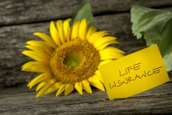 Best life insurance options for your needs