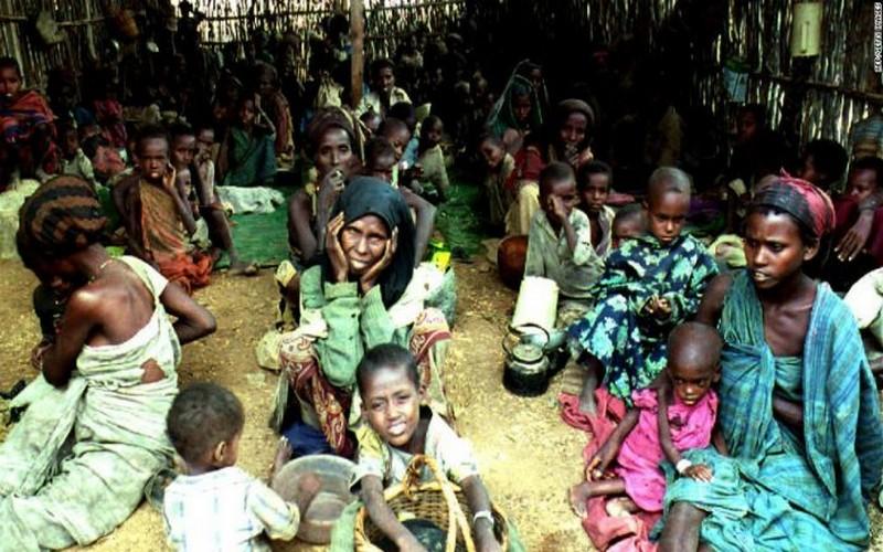 Cinq millions de Sahéliens ont besoin d'une assistance alimentaire urgente (ONU)