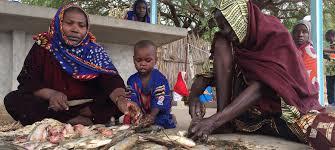 ONU Info/Dan Dickinson Des femmes écaillent du poisson péché dans le lac Tchad afin de le vendre sur les marchés de la région.