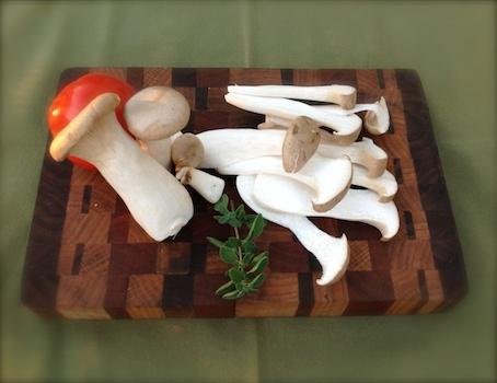 royal trumpet king trumpet mushrooms
