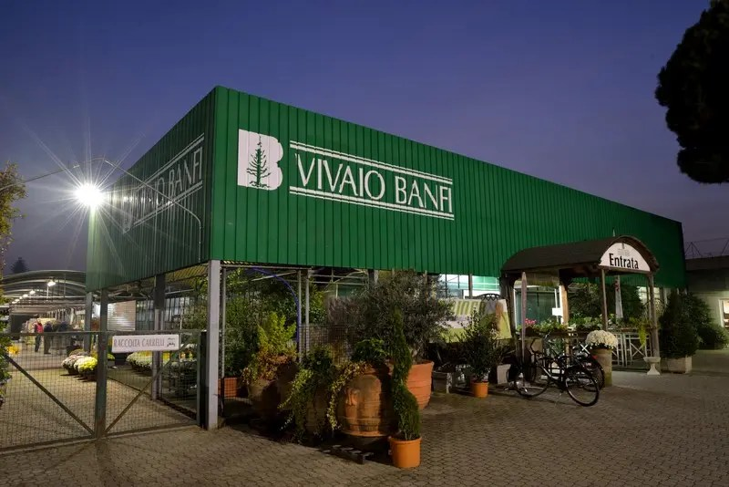Vivaio Banfi  Garden center provincia Milano  Vivaio Banfi