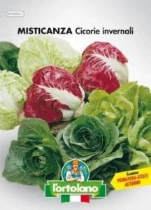 Misticanza-Cicorie-invernali