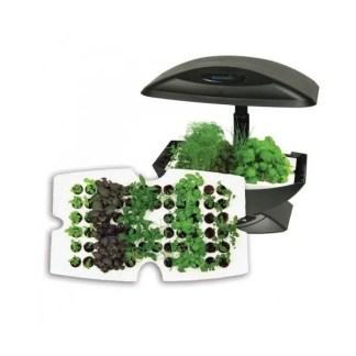 garden-starter-kit-vassoio-germinazione-66-semi-per-aerogarden-Img_Principale_21433
