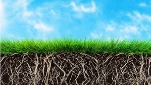 Bioattivati per prati