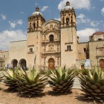 Recetas Especiales de Ferias Mexicanas