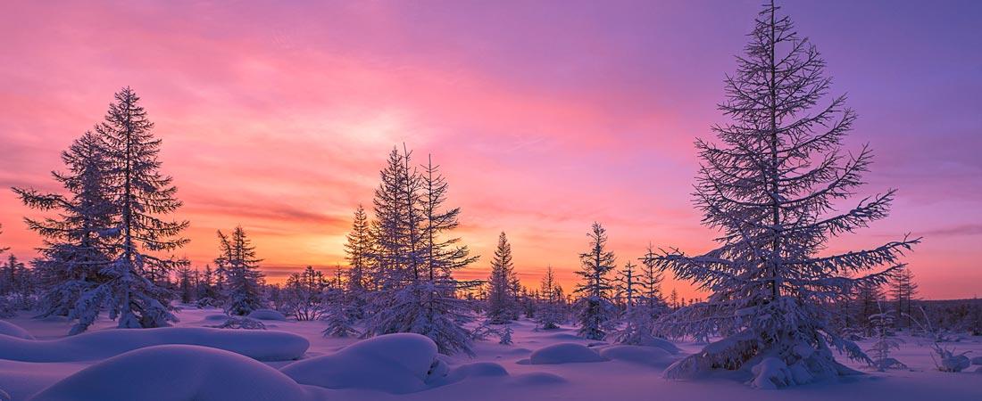 Rveillon En Laponie
